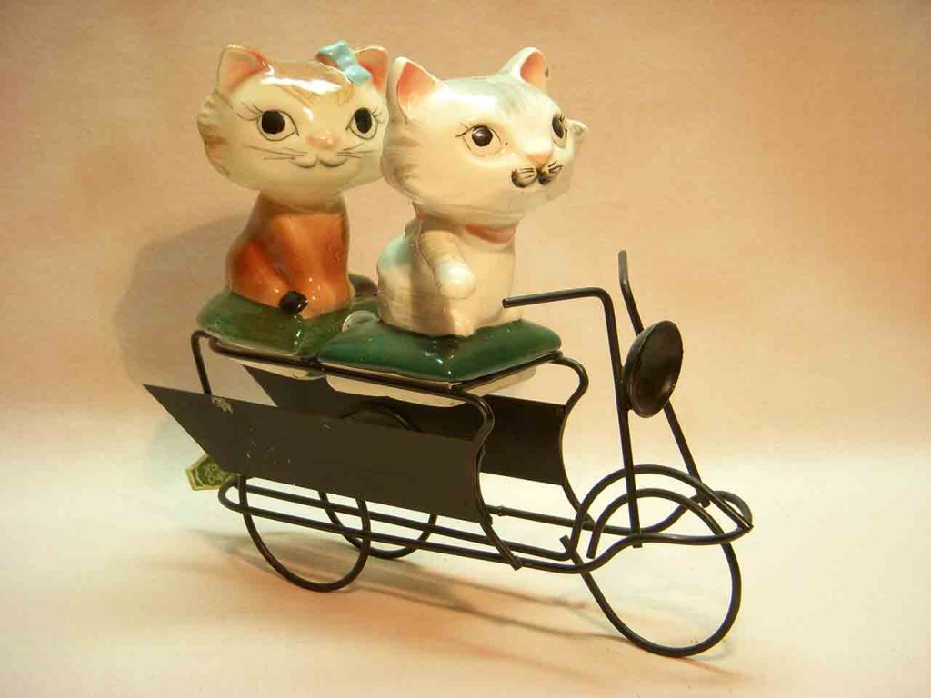 Introduction to types of shakers - Wire and spring sets - cat couple riding wire bicycle