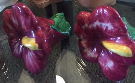 Hibiscus flowers by Pacific salt and pepper shakers