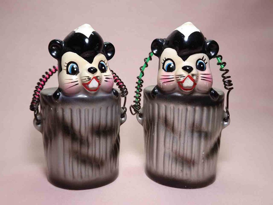 Skunks in trash cans salt and pepper shakers