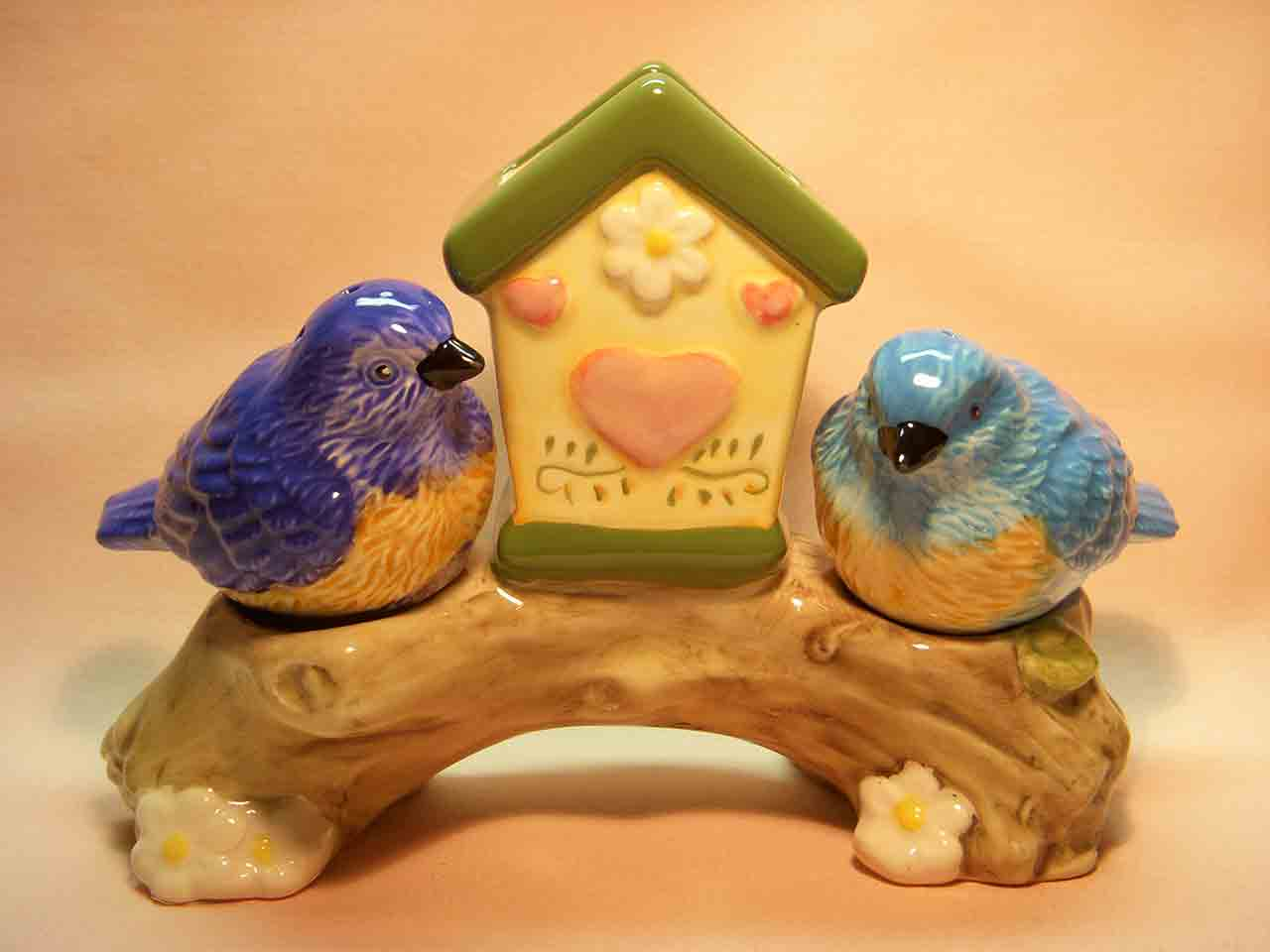 Birds with birdhouse salt and pepper shakers